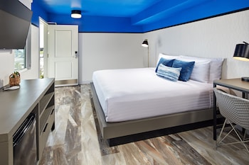 Room, 1 King Bed (Emerald)