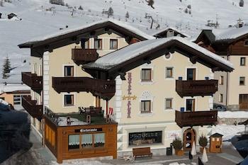 Hotel - Alba Alpine Hotel