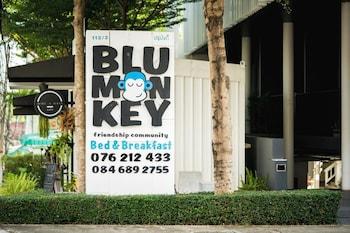 Hotel - Blu Monkey Bed & Breakfast Phuket