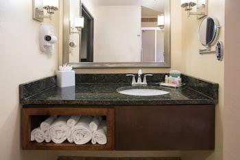 Holiday Inn Hotel & Suites Durango Central - Bathroom  - #0