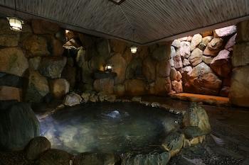 ARIMA ONSEN MOTOYU KOSENKAKU Hot springs