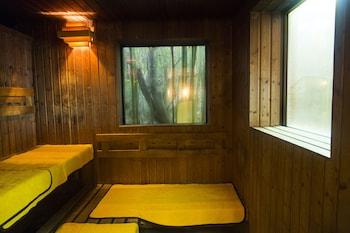 ARIMA ONSEN MOTOYU KOSENKAKU Sauna