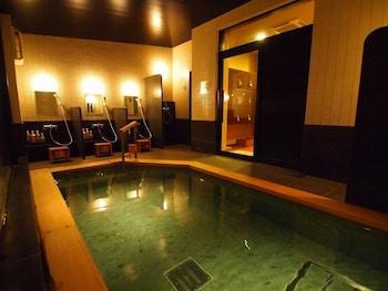 OCHANOMIZU HOTEL SHORYUKAN Indoor Pool