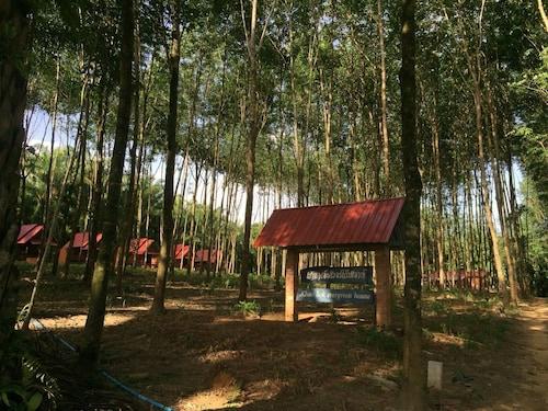 . Khao Sok Evergreen House