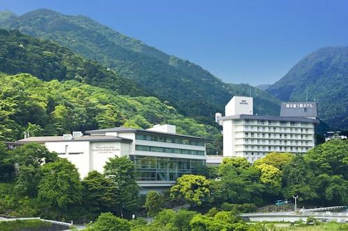 . Yumoto Fujiya Hotel