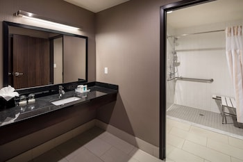 Premium Studio, 1 King Bed, Accessible (Mobility & Hearing, Roll-in Shower)