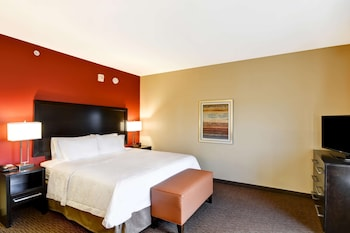 Room, 1 King Bed, Allergy Friendly (Pure)