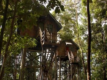 Hotel - Permai Rainforest Resort