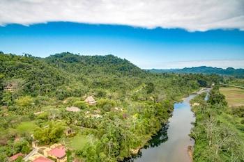 Hotel - Sleeping Giant Rainforest Lodge