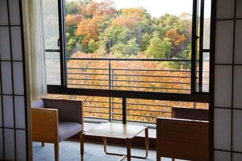 GINSUISO BEKKAN CHORAKU View from Room
