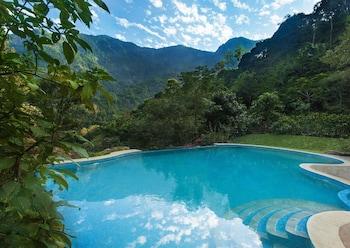 Hotel - Kurumba Village Resort – Nature Resorts, Nilgiris, India