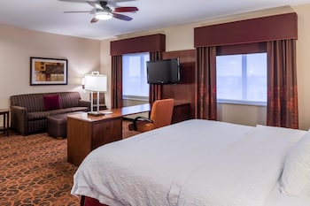 Suite, One King Bed