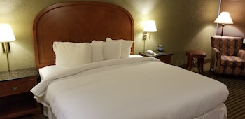 Junior Suite, 1 King Bed, Refrigerator & Microwave, Mountain View