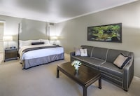 Deluxe King Room at Cooper Hotel Conference Center & Spa in Dallas