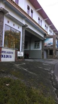 Hotel - Hotel Nadia Bromo
