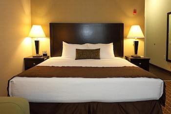 Standard Oda, 1 En Büyük (king) Boy Yatak, Engellilere Uygun, Küvet