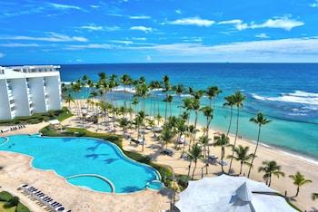 Hotel - Xeliter Marbella - Free WiFi