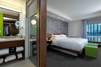 Room, 1 King Bed, City View (Main Floor)