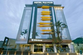 Palmas Executivo 飯店 Hotel Palmas Executivo