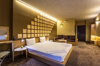 Hotel - Art Hotel Simona