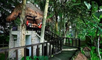 Hotel - Villa Puri Darma Agung