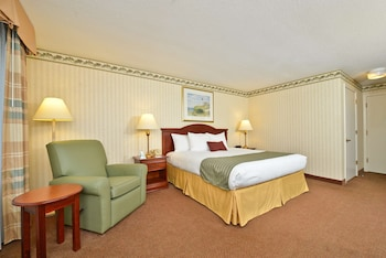 Standard Room, 1 King Bed, Refrigerator & Microwave (Walk-in Shower, Scenic View)