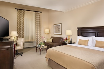 Studio Suite, 1 King Bed with Sofa bed