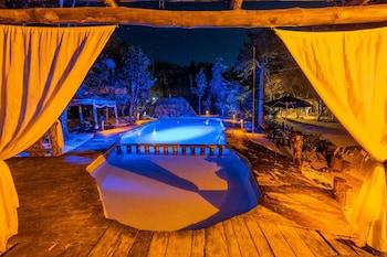 Hotel - Jolie Jungle