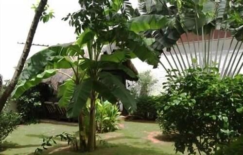 Hôtel Aurore, Golfe (incl Lomé)