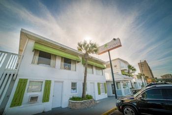 Hotel - Palm Grove