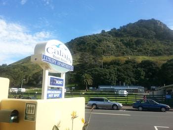 Hotel - Calais Mount Resort