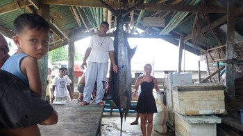 Sailfish Bay Surf & Big Game Fishing Lodge Surigao Del Norte Fishing