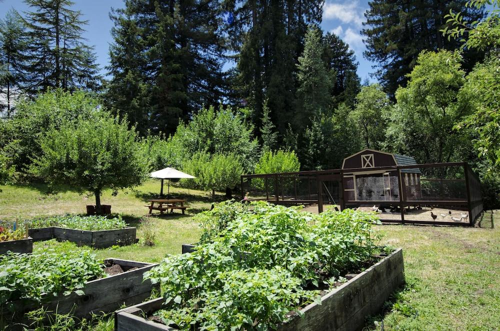 애플우드 인 & 스파(Applewood Inn and Spa) Hotel Image 57 - Garden