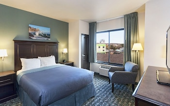Room, 1 Queen Bed, No Deck, Land View