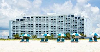 希爾頓逸林橙色海灘島嶼之家飯店 Island House Hotel Orange Beach - a DoubleTree by Hilton