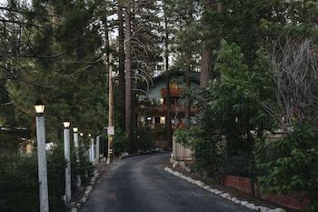 Hotel - Honey Bear Lodge & Cabins