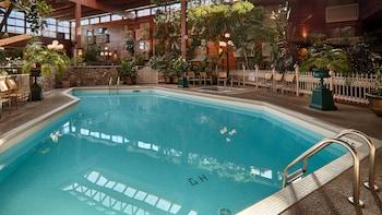 Standard Oda, 2 Büyük (queen) Boy Yatak, Havuz Kenarı