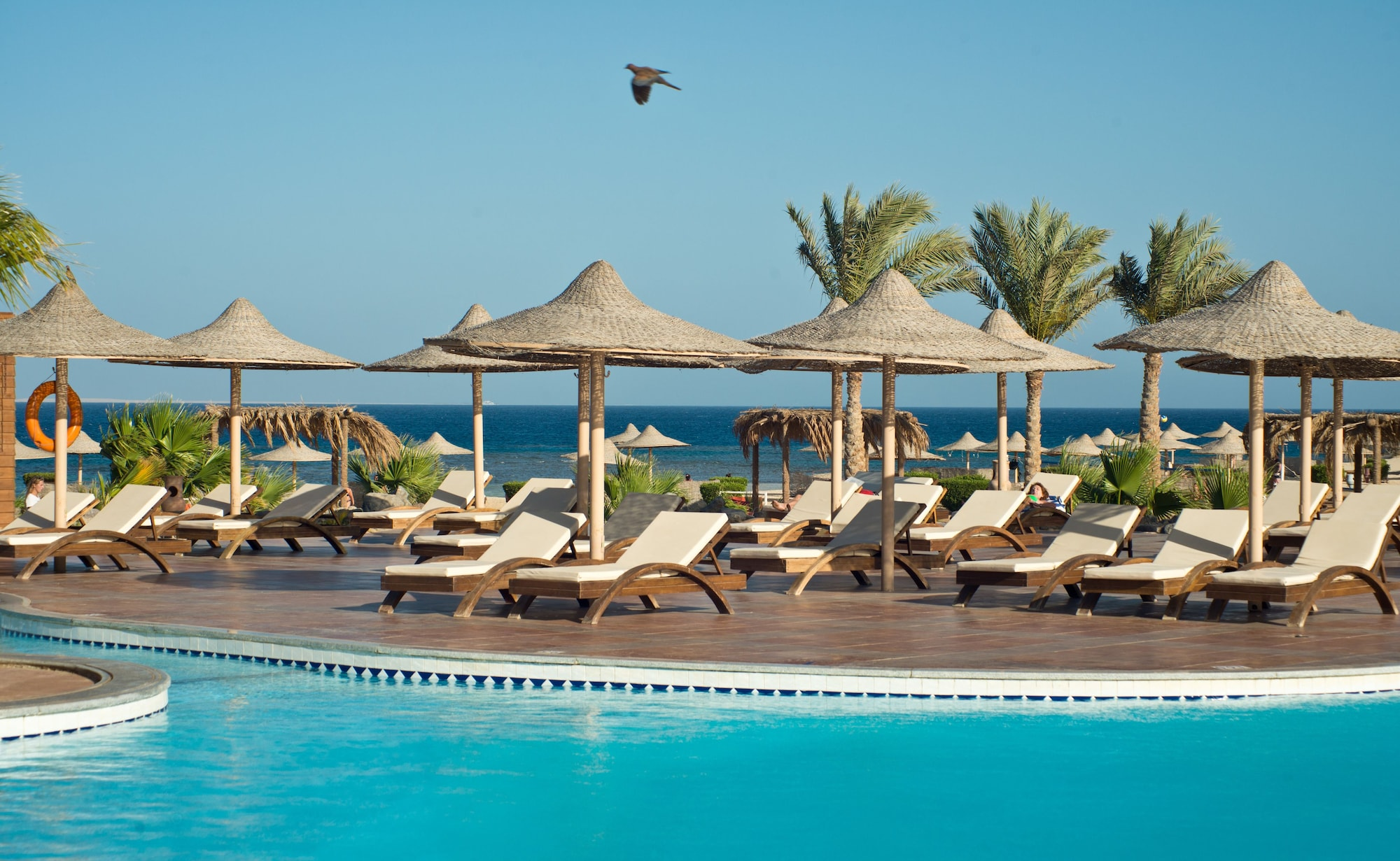 Shams Alam Beach Resort, Marsa 'Alam