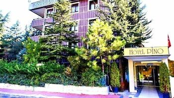 Hotel - Ankara Hotel Pino