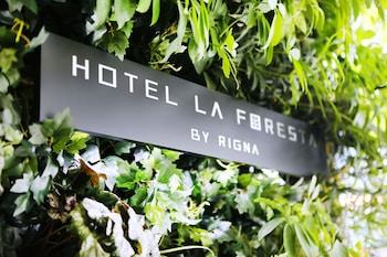 Hotel - HOTEL LA FORESTA BY RIGNA
