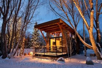 Cabin (Modern Rustic Wedge)
