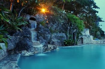 Coralpoint Gardens Cebu Pool Waterfall