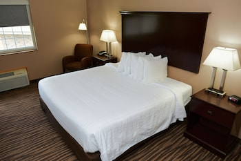Room, 1 King Bed, Accessible Roll İn Shower, Non Smoking