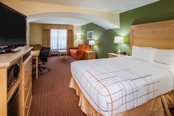 Deluxe Room, 1 Queen Bed, Non Smoking