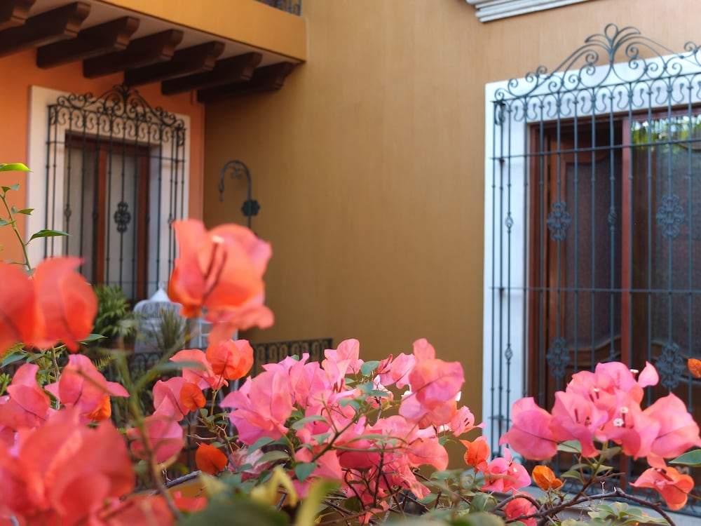 호텔 부티크 파라도르 산 미구엘(Hotel Boutique Parador San Miguel) Hotel Image 49 - Terrace/Patio