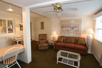 Large 1 Bedroom, Kitchen, Patio