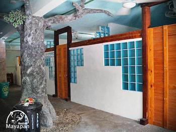 Hotel - Hostal Mayapan