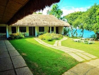 Quo Vadis Dive Resort Moalboal Courtyard