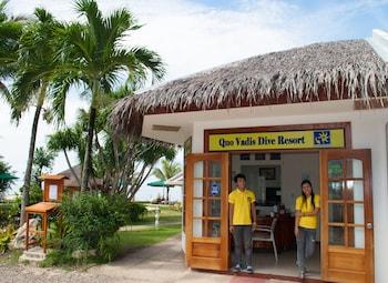 Quo Vadis Dive Resort Moalboal Reception