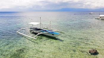 Quo Vadis Dive Resort Moalboal Boating